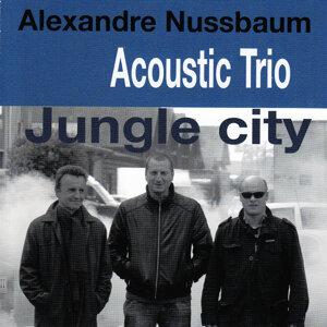 Alexandre Nussbaum Acoustic Trio 歌手頭像