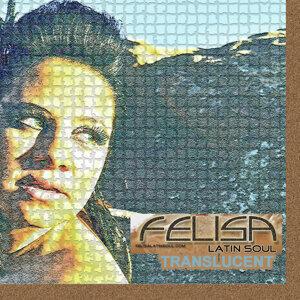 Felisa Latin Soul 歌手頭像