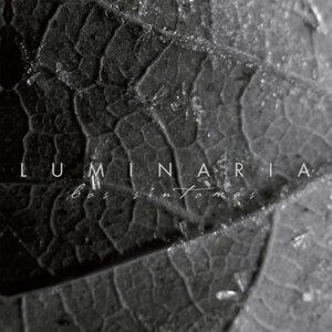 Luminaria 歌手頭像