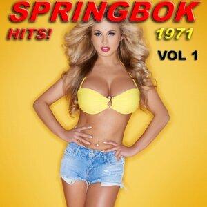 Springbok Kunstenaars 歌手頭像