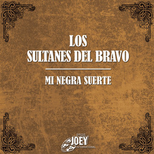 Los Sultanes Del Bravo 歌手頭像