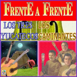 Trio Los Caminantes 歌手頭像