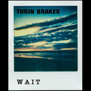 Turin Brakes (杜林矮叢樂團)