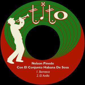 Conjunto Habana De Sosa 歌手頭像