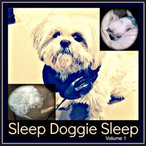 The Sleep Whisperer 歌手頭像