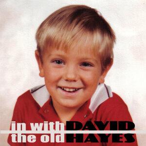 David Hayes