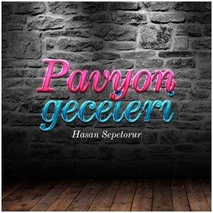 Hasan Sepetorur 歌手頭像