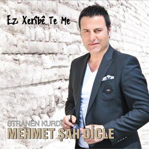 Mehmet Şah Dicle 歌手頭像
