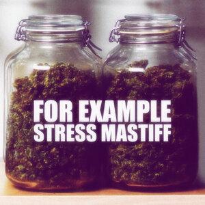 Stress Mastiff 歌手頭像