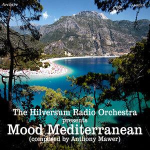 The Hilversum Radio Orchestra 歌手頭像