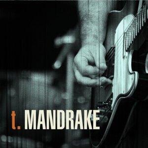 T. Mandrake 歌手頭像