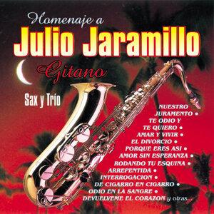 Carlos Salas Venegas - Sax / Fernando Guevara - Requinto / Trio Sanfer - Acompañamiento 歌手頭像