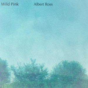 Wild Pink 歌手頭像