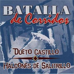 Dueto Castillo y Halcones De Salitrillo 歌手頭像