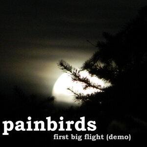 Painbirds 歌手頭像