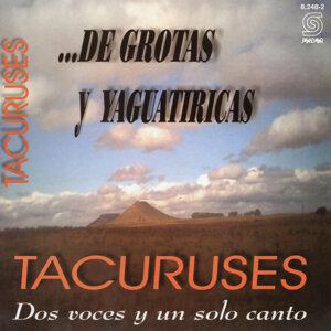 Tacuruses 歌手頭像