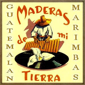 Marimba Maderas De Mi Tierra 歌手頭像
