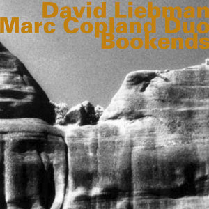 David Liebman - Marc Copland Duo