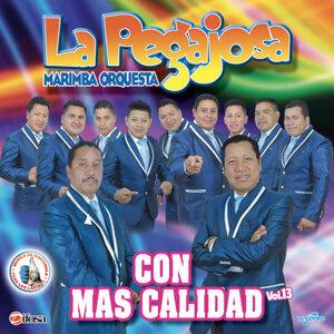 Marimba Orquesta La Pegajosa 歌手頭像
