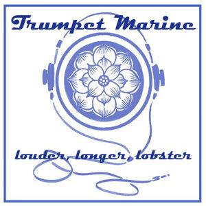 Trumpet Marine 歌手頭像