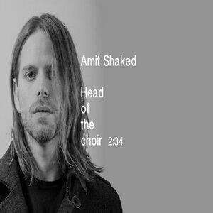Amit Shaked 歌手頭像