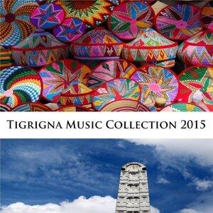 Baheli Tigray 歌手頭像