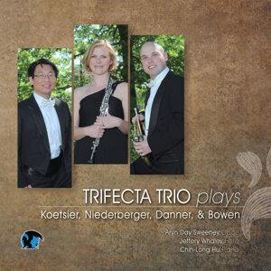 Trifecta Trio 歌手頭像