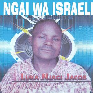 Luka Njagi Jacob 歌手頭像