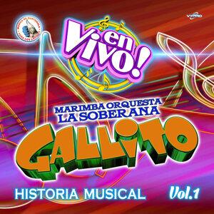 Marimba Orquesta La Soberana Gallito 歌手頭像