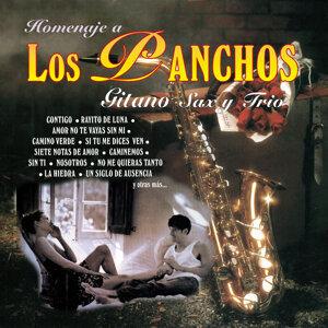 Carlos S. Venegas Gitano - Sax / Fernando Guevara - Requinto / Trio Sanfer / Acompañamiento 歌手頭像