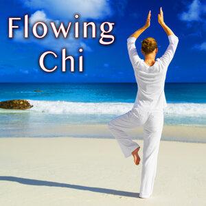 Zen Meditation Master