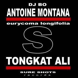 Antoine Montana feat. DJ Bo 歌手頭像