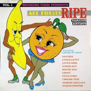 All Fruits Ripe Vol. 1 歌手頭像