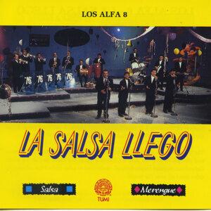 Los Alfa 8 歌手頭像