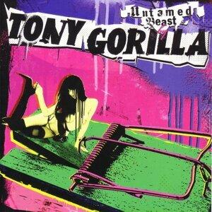 Tony Gorilla 歌手頭像