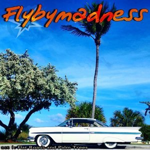 Flybymadness 歌手頭像