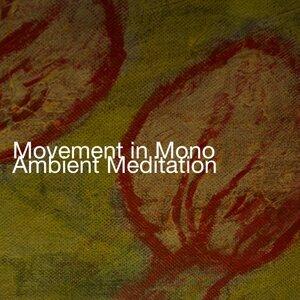 Movement in Mono 歌手頭像