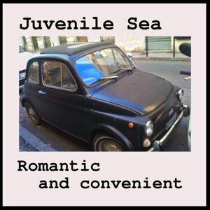 Juvenile Sea 歌手頭像