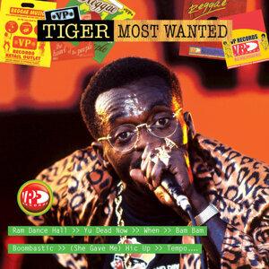 Tiger 歌手頭像