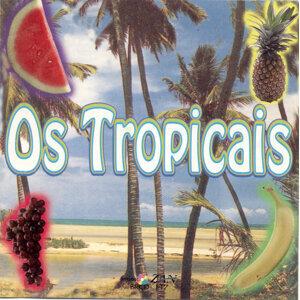 Os Tropicais 歌手頭像