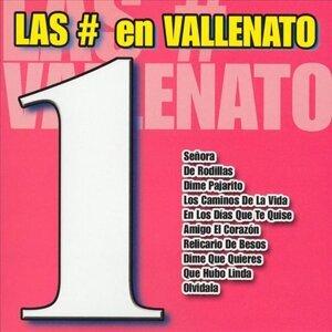 Vallenato All Stars 歌手頭像