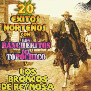 Los Rancheritos Del Topochico y Los Broncos De Reynosa 歌手頭像