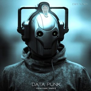 Data Punk 歌手頭像