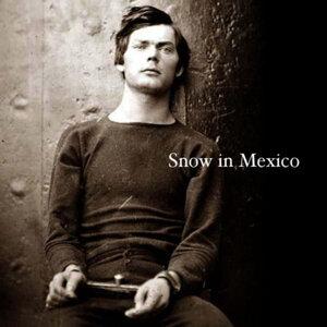Snow In Mexico 歌手頭像
