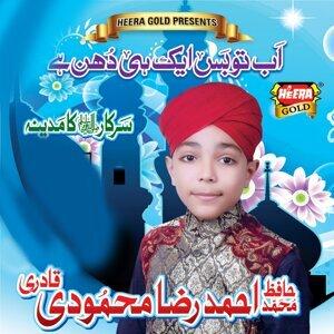 Ahmed Raza Mehmoodi Qadri 歌手頭像