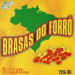Brasas do Forró 歌手頭像