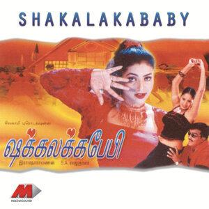 S A Rajkumar 歌手頭像