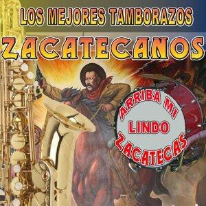 Los Mejores Tamborazos Zacatecanos 歌手頭像