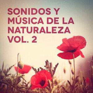 Música para Dormir Con Relajantes Sonidos de la Naturaleza 歌手頭像
