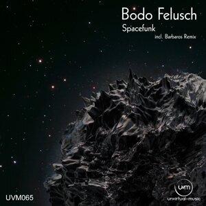 Bodo Felusch 歌手頭像